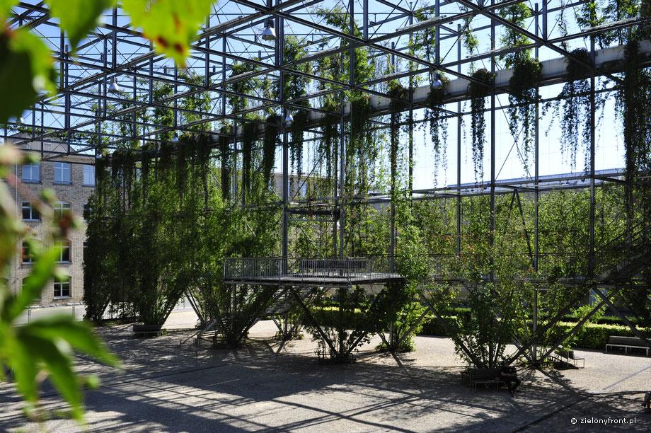 MFO-Park, pergola, liny, wnętrze, patio