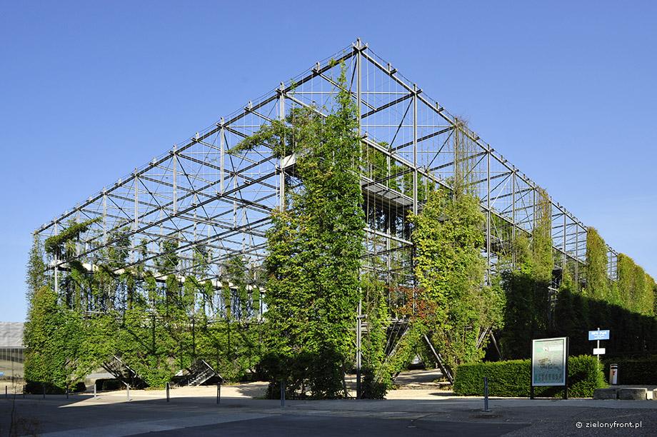 Park MFO, Zurych, pergola, pnącza, zielony front, liny