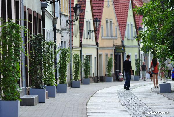 Kolumny obrośnięte pnączami na ulicy. Natychmiastowy efekt.